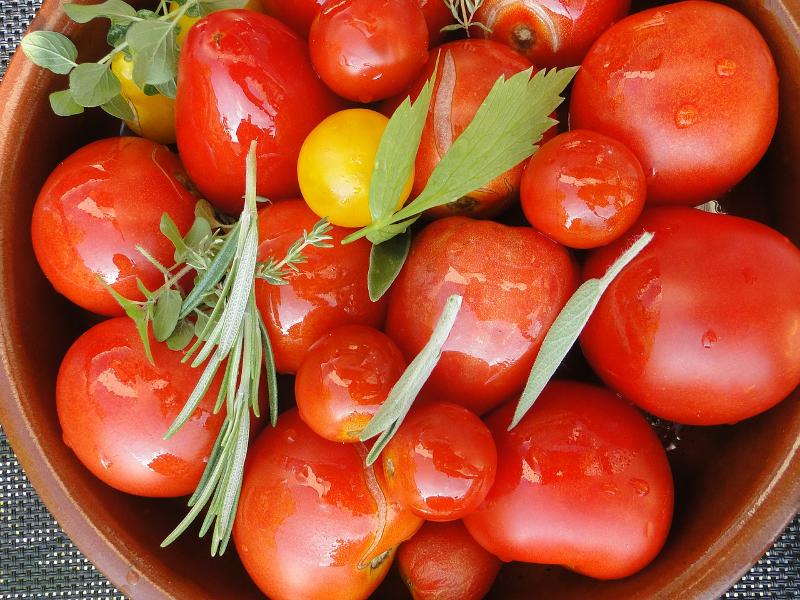 tomato-harvest-660628_1280